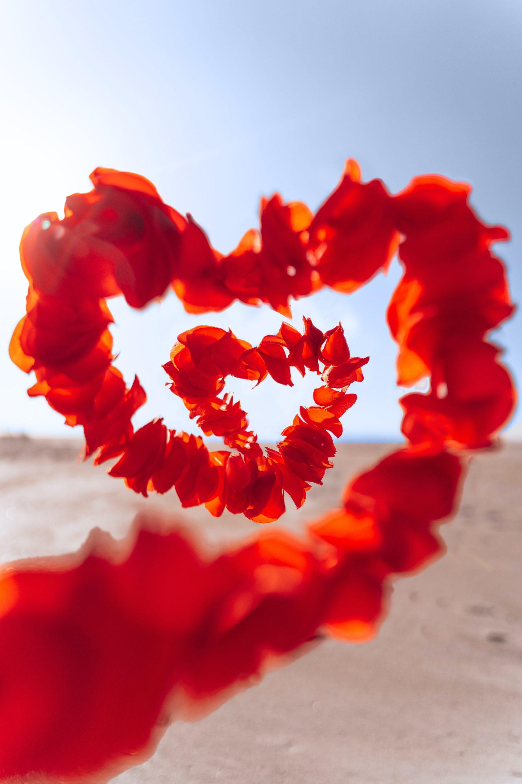 Amor, confianza, felicidad, libertad, armonia, estabilidad, bienestar, emociones, emociones positivas, confianza, seguridad, conexion